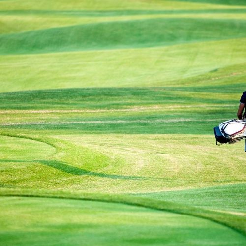 Exploring Palm Coast's Golf Courses Featured Image